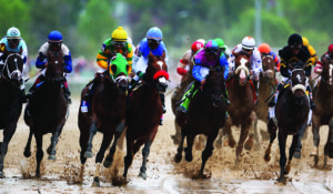 LOUISVILLE, KY - MAY 04:  The field races down the front stretch during the 139th running of the Kentucky Derby at Churchill Downs on May 4, 2013 in Louisville, Kentucky.  (Photo by Andy Lyons/Getty Images)