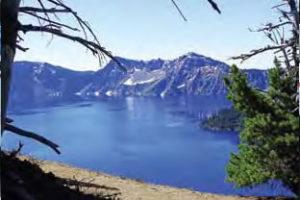 Snowbirds Aflutter in Pacific Northwest